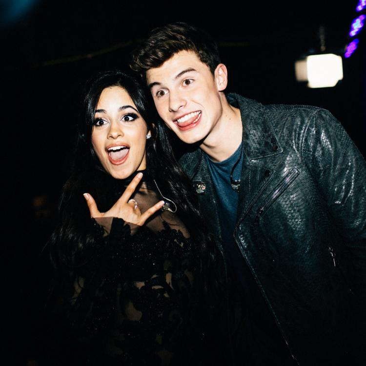 Camila Cabello,Shawn Mendes,Hollywood