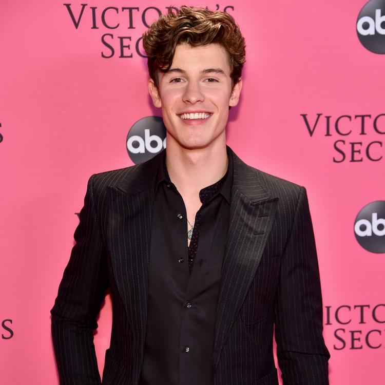 Shawn Mendes REVEALS his Netflix documentary In Wonder