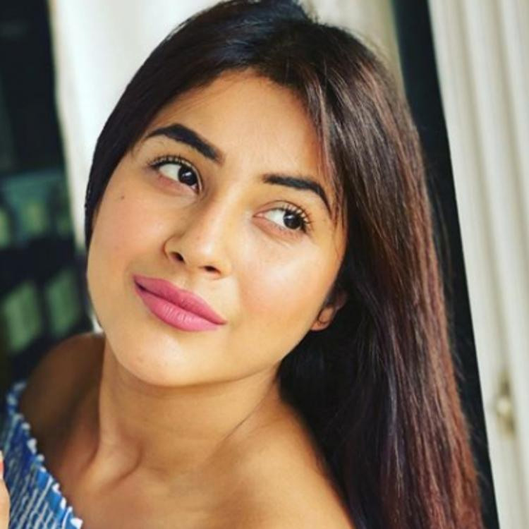 Shehnaaz Gill grooving to Badshah's peppy song 'Paagal' inside a car shows she is a true entertainer; WATCH