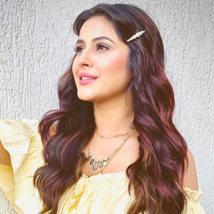 Shehnaaz Gill pens a heartwarming 'thank you' note for fans; Says 'It's because of you all that I'm respected'