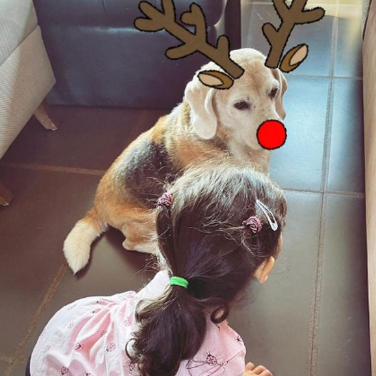 Inaaya Naumi Kemmu joins her pet in turning into Soha Ali Khan's 'reindeers' for Christmas & it's too adorable