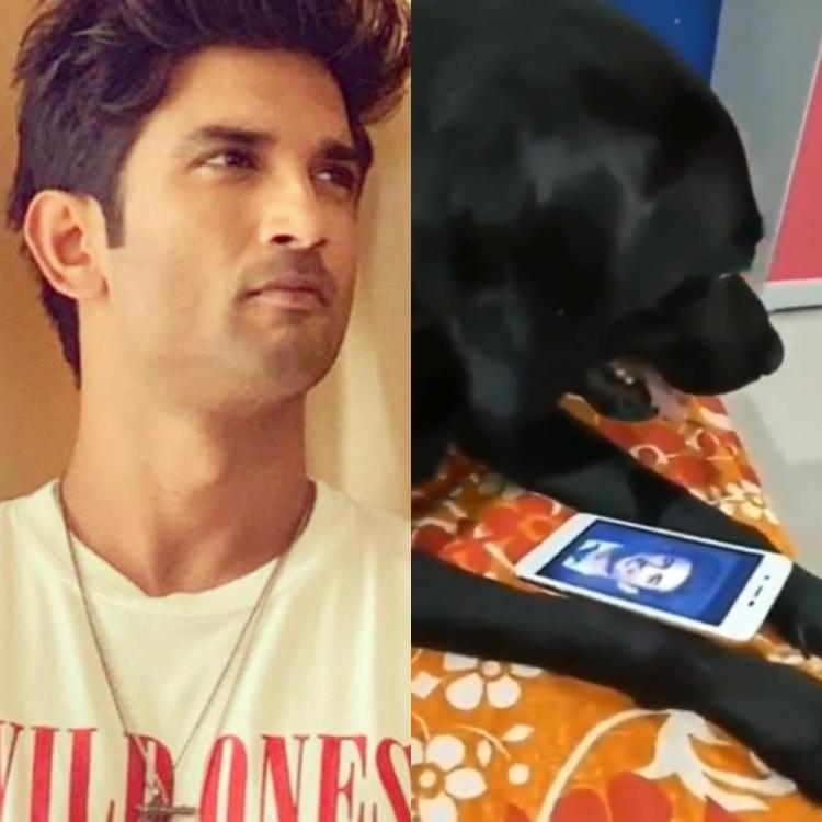 Sushant Singh Rajput's pet dog Fudge is NOT dead; Sources close to late actor rubbish rumours