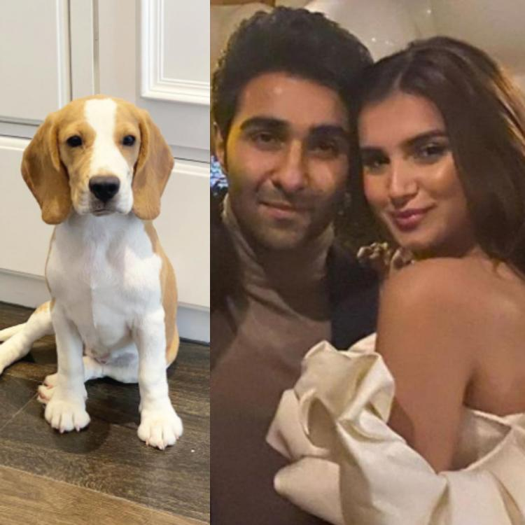 Tara Sutaria introduces to a new member of her family; Thanks rumoured boyfriend Aadar Jain and Pia Sutaria