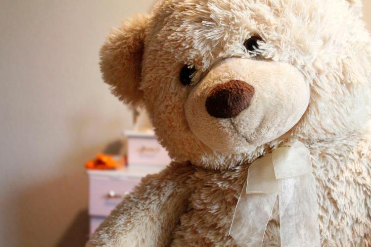 Happy Teddy Day 2019: Reasons why teddy bears make the best of the gifts for the Valentines week