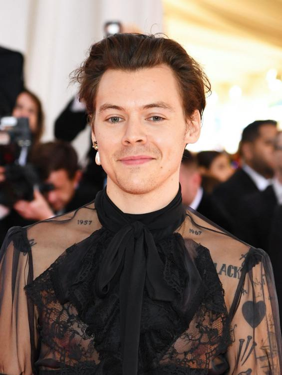 Harry Styles will not be starring opposite Halle Bailey in The Little Mermaid.