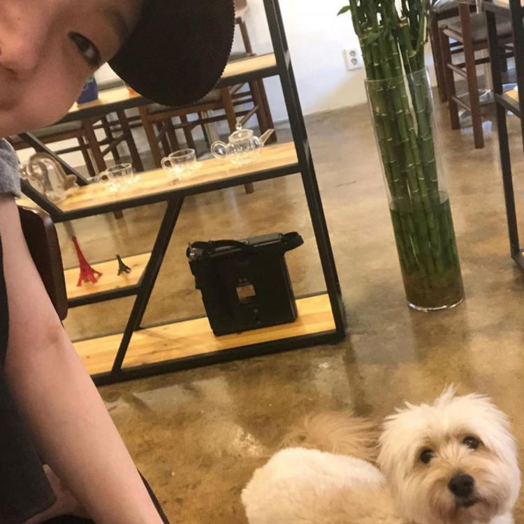 The King: Eternal Monarch actress Kim Go Eun poses with an adorable pooch and we're confused whom to focus onThe King: Eternal Monarch actress Kim Go Eun poses with an adorable pooch and we're confused whom to focus on
