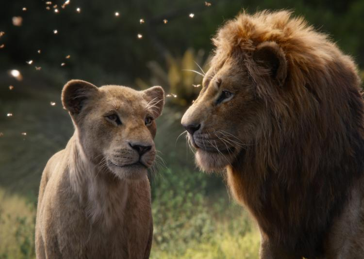 The Lion King Movie Review: The enrapturing visual effects is the true king in Donald Glover and Beyonce's film