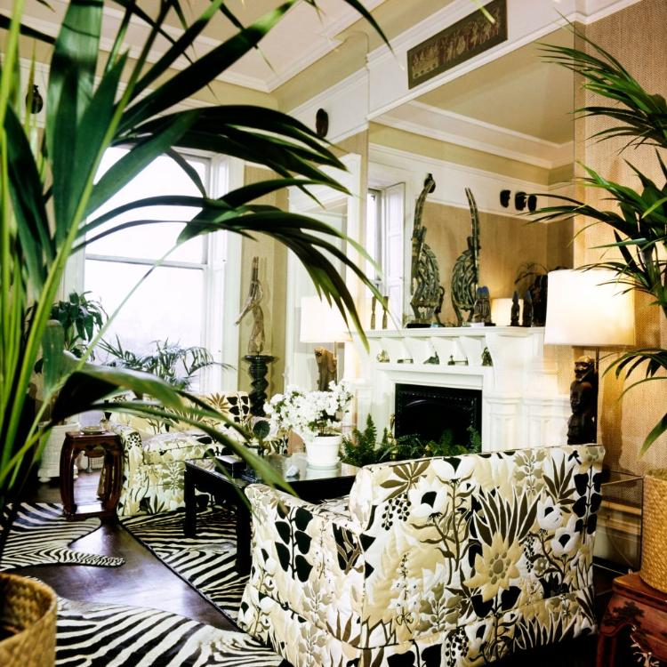 Tips to decorate your home in Biophilic style
