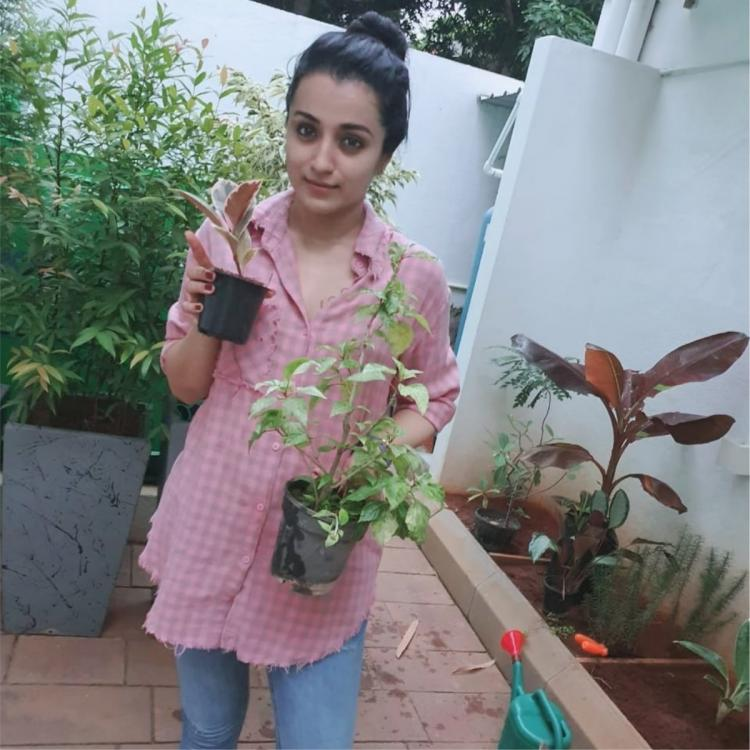 Trisha Krishnan takes up Green India Challenge and requests her fans to do the same; See photos