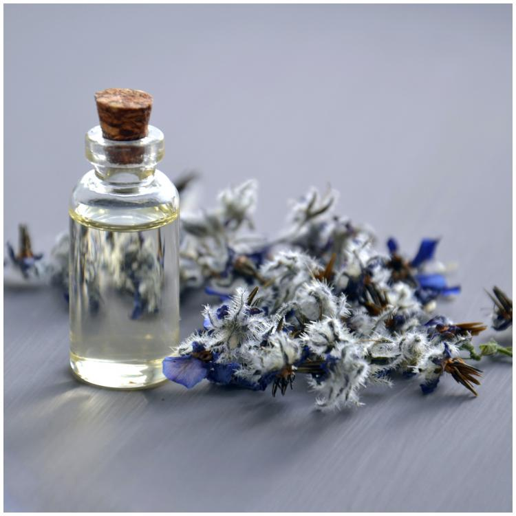 Fragrances and scented products under Rs.99