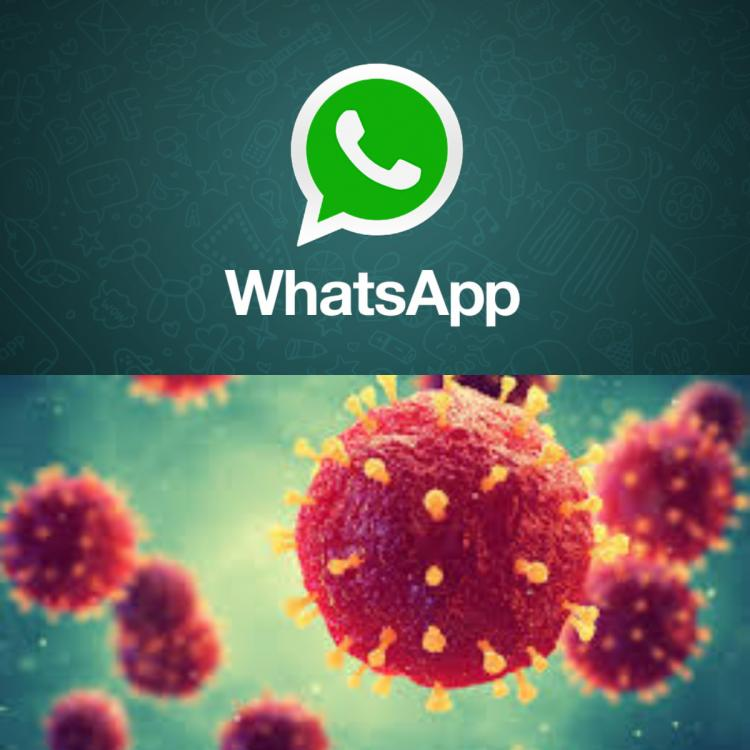 WhatsApp, Covid-19 update, Vaccination centers, ChatBot