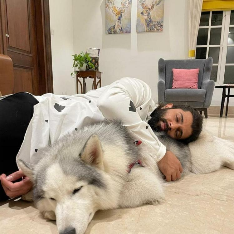 Vijay Deverakonda lights up the internet by sharing a photo with Storm as they both take a quick power nap