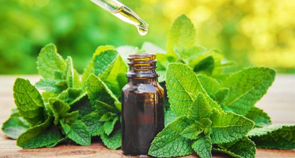 Peppermint Oil: 5 Major hair, skin and other health benefits of the essential oil