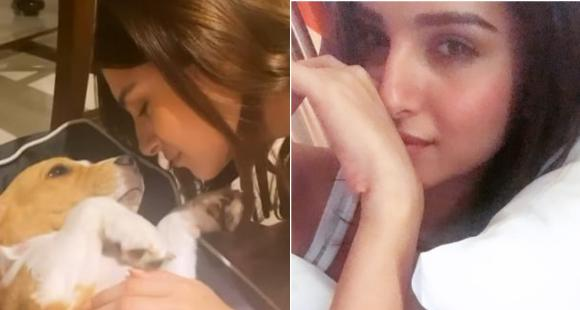 Tara Sutaria lights up the internet with her pawdorable video of playing with her pet dog Bailey; WATCH