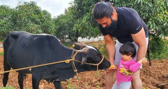 Yash goes on a farm getaway with family and gets along with farm animals; See post - PINKVILLA