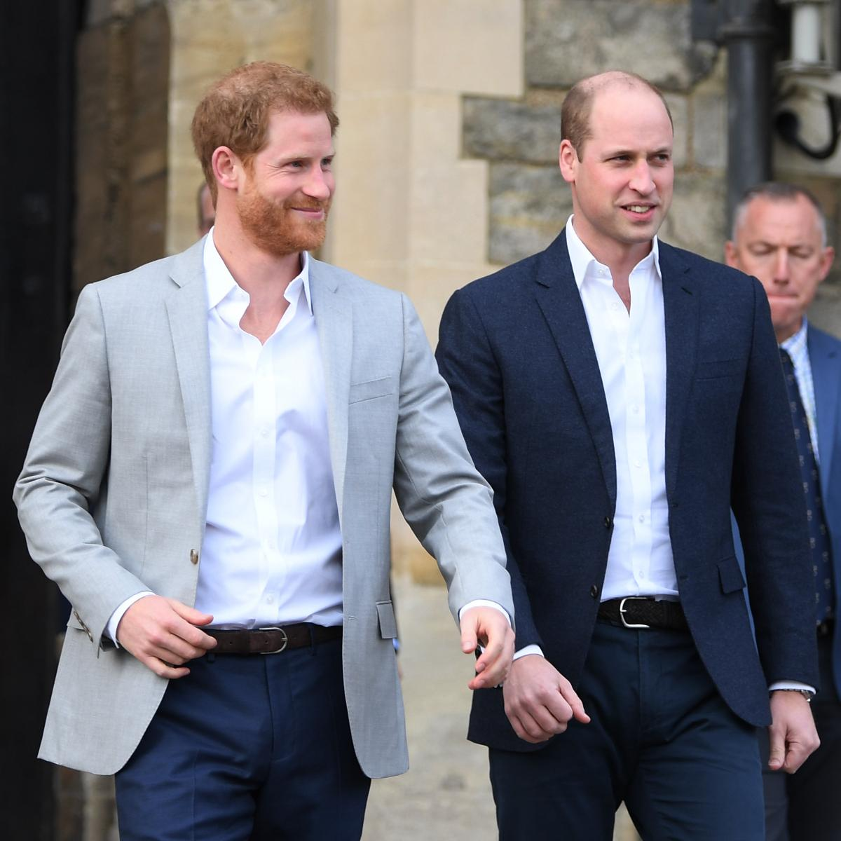 Prince Harry and Prince William clicked candidly amid a royal event
