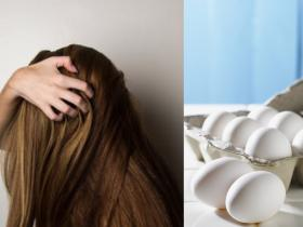 Beauty,Home Remedies,hair care tips,benefits of egg mask