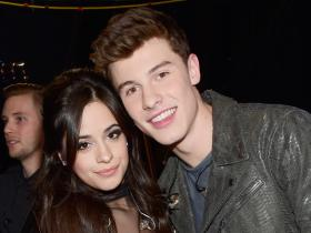Grammys,One Direction,Camila Cabello,Shawn Mendes,Hollywood