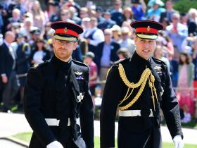 Prince William,Prince Harry,royal family,Hollywood