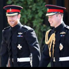 Prince Harry opens up on royal rift with Prince William: We are certainly on different paths at the moment