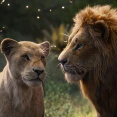 The Lion King Review: The enrapturing visual effects is the true king in Donald Glover and Beyonce's film