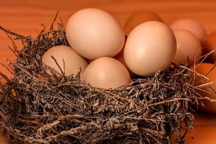 Health Benefits of Eggs: You should consider adding eggs to your daily diet; Here's Why