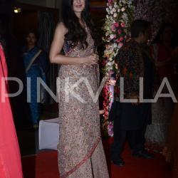 Katrina Kaif looks lovely at Neil Nitin Mukesh - Rukmini Sahay's wedding reception