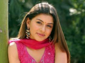 Hansika Motwani\'s stupefying TRANSFORMATION will leave you amazed; Have a look