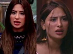 Bigg Boss 13: Mahira Sharma\'s THESE fights inside the show resulted in controversies