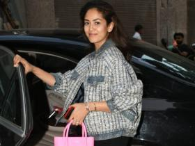 Mira Rajput: From Balenciaga to Fendi, jaw dropping collection of bags of Shahid Kapoor\'s wife