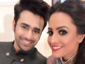 Naagin 3: Mahir to leave Bella; Vish to fall in love with Mahir