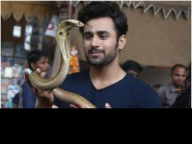 Pearl V Puri: Naagin 3 is on par with Game Of Thrones