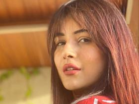 Shehnaaz Gill rocked a fringe hairstyle in THESE photos; Check them out