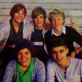 One Direction,Louis Tomlinson,Niall Horan,Hollywood