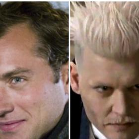 News,johnny depp,Harry Potter,Fantastic Beasts and Where to Find Them,jude law