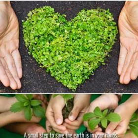 People,World Environment Day,Green planet,Earth