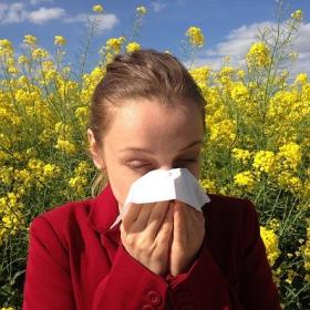 tips,home remedies,Health & Fitness,dust allergy