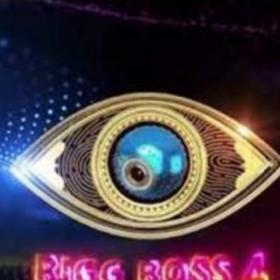 South,Bigg Boss Telugu,Bigg Boss Telugu 4