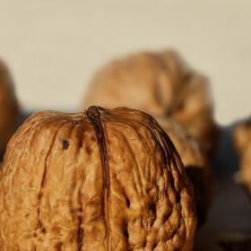 health benefits,walnuts,Health & Fitness,Ageing Process