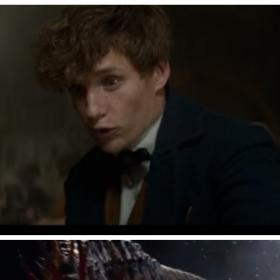Video,Eddie Redmayne,Harry Potter,Fantastic Beasts and Where to Find Them,J.K. Rowling,Katherine Waterston