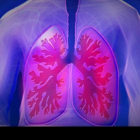 symptoms,treatment,Health & Fitness,lung cancer