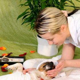 People,Dogs,pet parenting,Home Spa Day