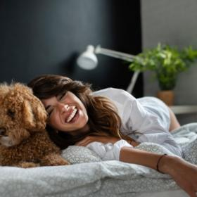 People,pet parenting,Dog Pets,Bed Sharing