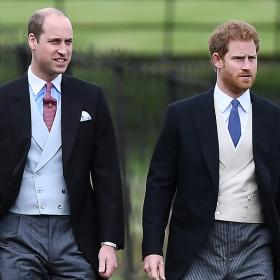 Prince William,Prince Harry,Hollywood