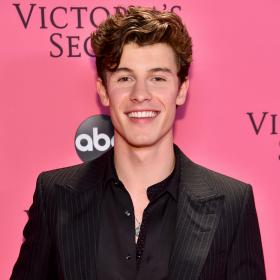 Shawn Mendes,Hollywood