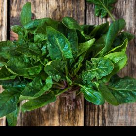 Beauty,hair care,spinach for hair,benefits of spinach for hair,palak