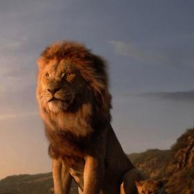 siddharth,The Lion King,South
