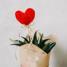 Love & Relationships,love,home decor,valentines day
