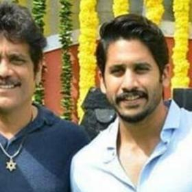 Nagarjuna,Naga Chaitanya,South