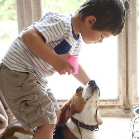 People,pet parenting,World Environment Day 2020